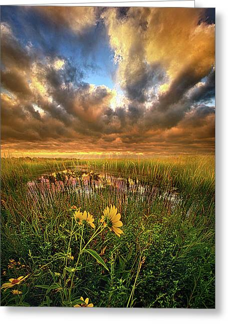 Just Moving Slow Greeting Card by Phil Koch