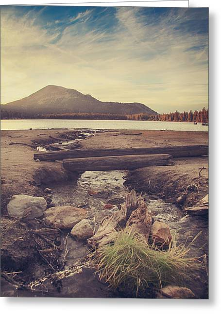Driftwood Greeting Cards - Just One More Kiss  Greeting Card by Laurie Search