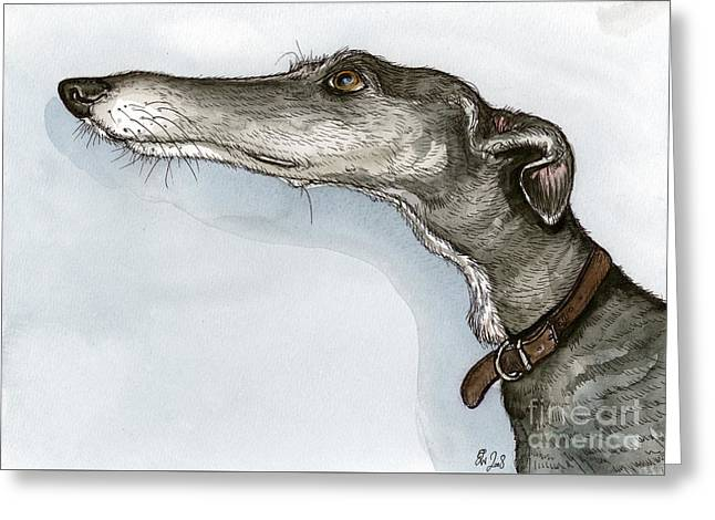 Greyhound Dog Greeting Cards - Just wondering if... Greeting Card by Elle Wilson