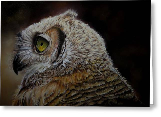 Juvenile Great Horned Owl Greeting Card by Claudia Jorio