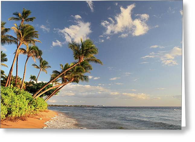 Lahaina Greeting Cards - Kaanapali Beach Maui Greeting Card by Pierre Leclerc Photography