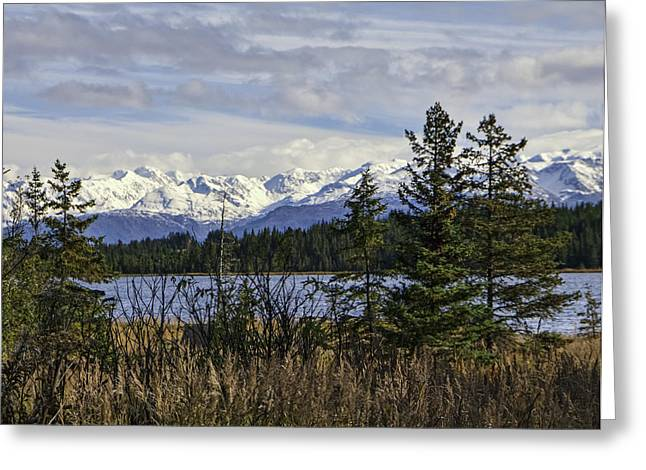 Snow Capped Greeting Cards - Kachemak Bay Mountain Range Greeting Card by Phyllis Taylor