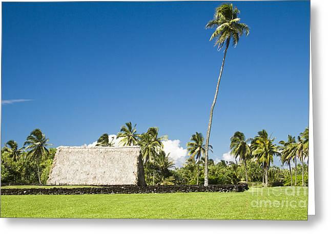 Niu Greeting Cards - Kahanu Garden Hana Maui Hawaii Greeting Card by Sharon Mau