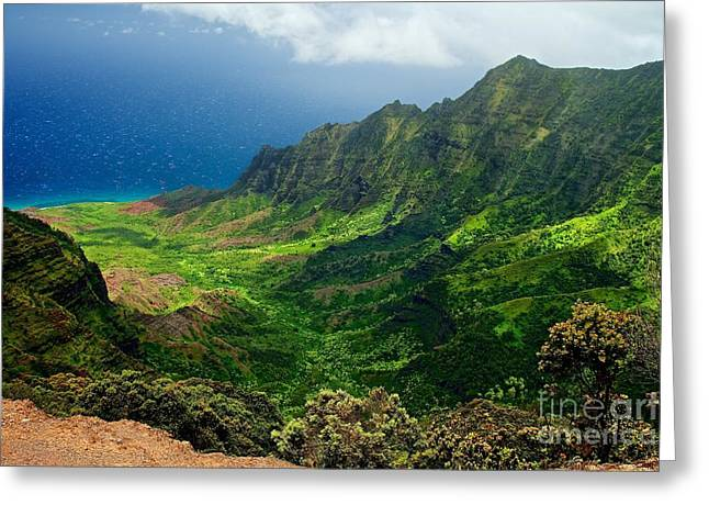 Mountain Valley Greeting Cards - Kalalau Valley Greeting Card by DJ MacIsaac