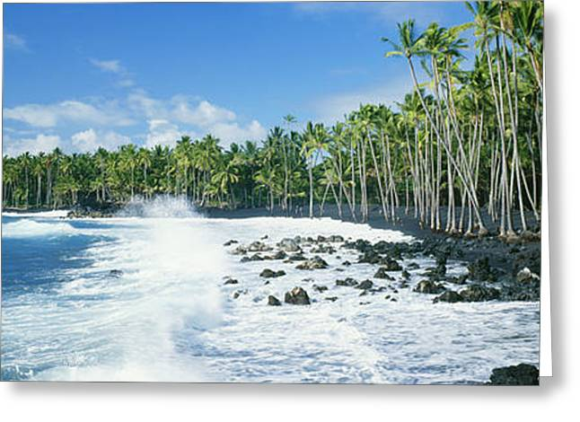 Blue Green Wave Greeting Cards - Kalapana Black Sand Beach Greeting Card by David Cornwell First Light Pictures Inc - Printscapes