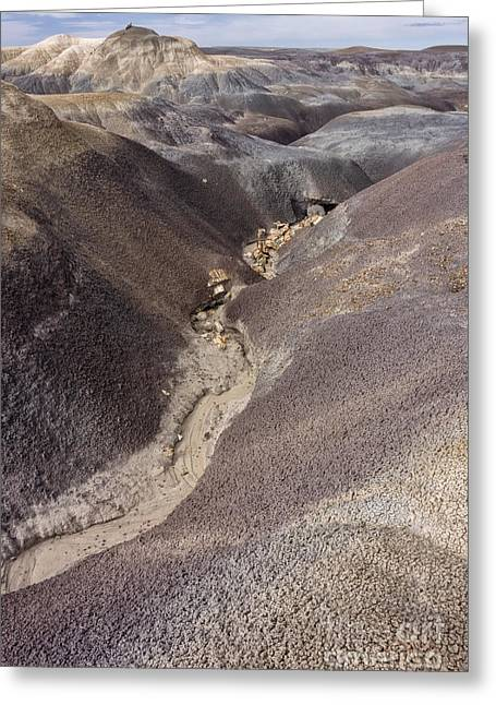 Petrified Forest National Park Greeting Cards - Kaleidoscope Landscape Greeting Card by Melany Sarafis