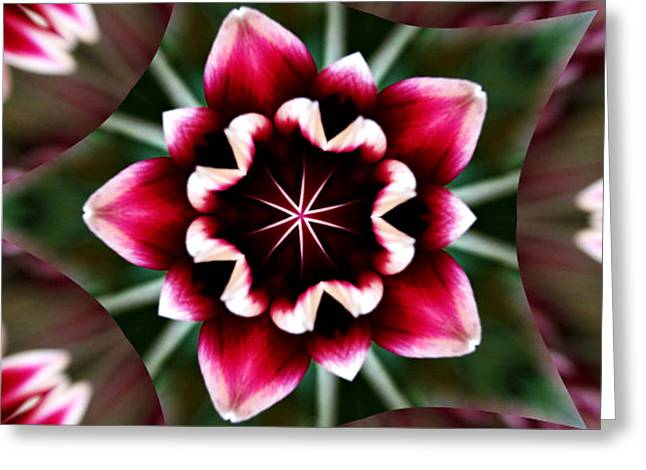 Kaleidoscope Effect Greeting Cards - Kaleidoscope of a Mum Greeting Card by Cathie Tyler