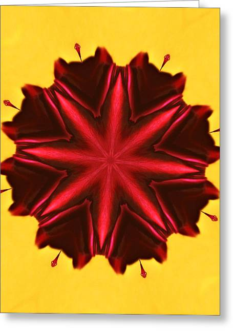 Kaleidoscope Effect Greeting Cards - Kaleidoscope of a Tulip Greeting Card by Cathie Tyler