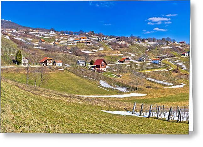 Blue Grapes Greeting Cards - Kalnik mountain vineyards and cottages panorama Greeting Card by Dalibor Brlek