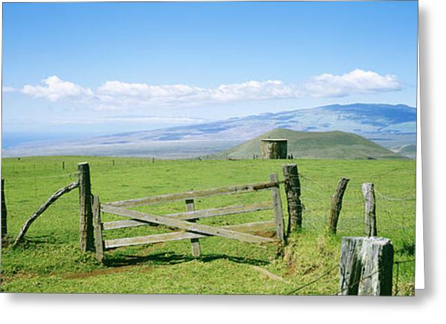 Kamuela Pasture Greeting Card by David Cornwell/First Light Pictures, Inc - Printscapes