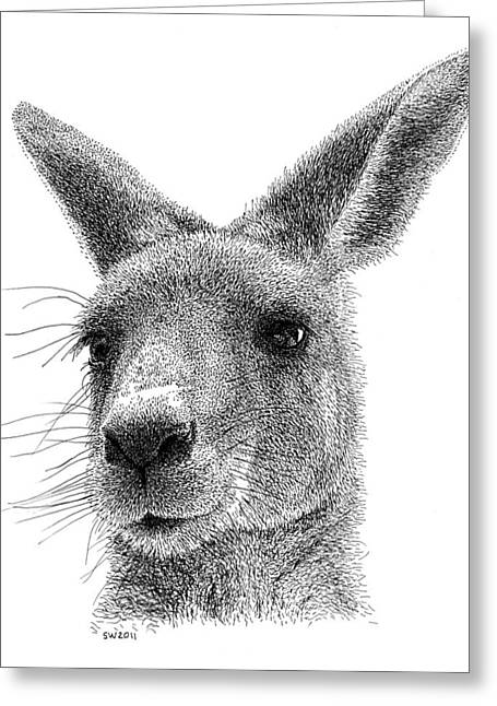 Kangaroo Drawings Greeting Cards - Kangaroo Greeting Card by Scott Woyak