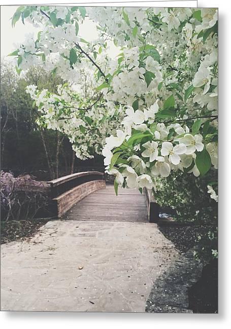 Walk Paths Digital Art Greeting Cards - Kansas Citys Loose Park Greeting Card by Stacia Blase