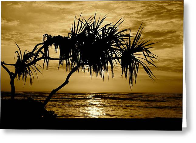 Quite Greeting Cards - Kapaa Sunrise Greeting Card by Michael Peychich