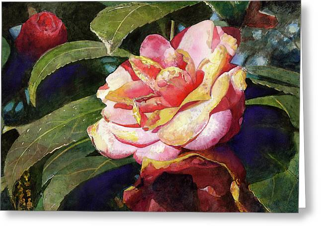 Florals Greeting Cards - Karma Camellia Greeting Card by Andrew King