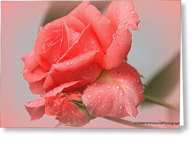 Recently Sold -  - Stein Greeting Cards - Karyns Rose Raindrops Greeting Card by Valerie Stein