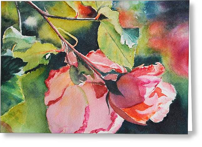 Kathy's Roses Greeting Card by Kathy Nesseth