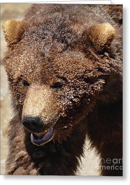 Katmai Alaskan Grissly Greeting Card by Diane E Berry