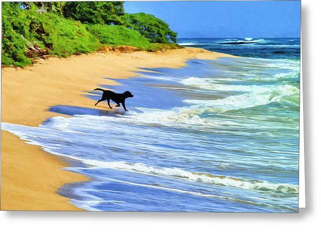 Kauai Dog Greeting Cards - Kauai Water Dog Greeting Card by Dominic Piperata