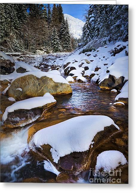 Kautz Creek Greeting Card by Inge Johnsson
