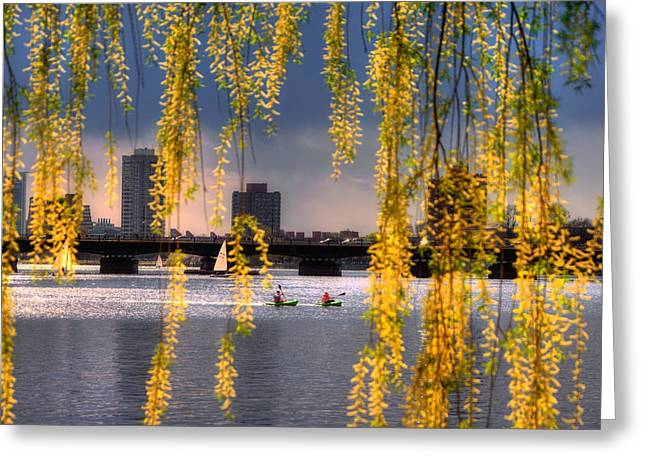 Spring Scenes Greeting Cards - Kayaking on the Charles River - Boston Greeting Card by Joann Vitali