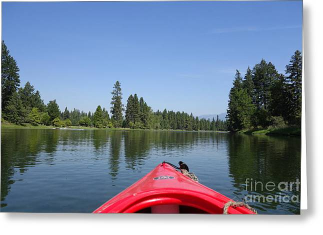 Canoe Photographs Greeting Cards - Kayaking down the Swan River Greeting Card by Nina Prommer