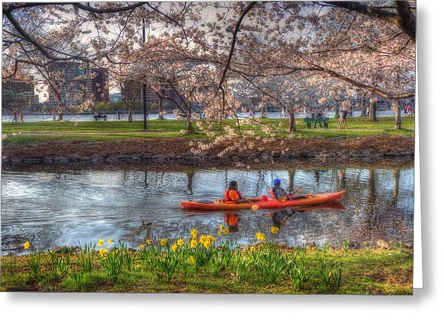 Charles River Greeting Cards - Kayaking on the Charles River - Boston Greeting Card by Joann Vitali