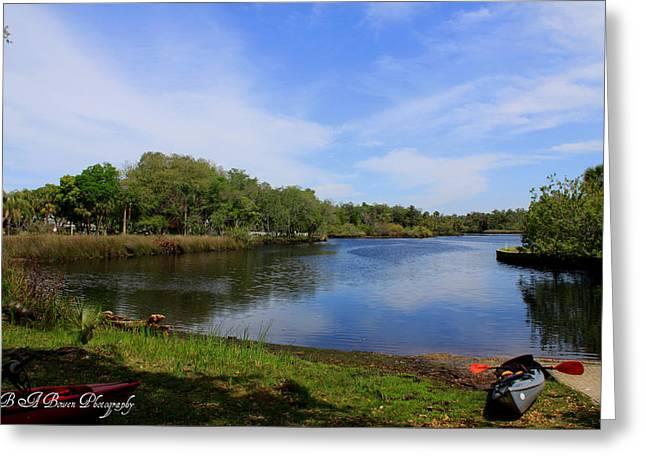 Pasco County Greeting Cards - Kayaking the Cotee River Greeting Card by Barbara Bowen