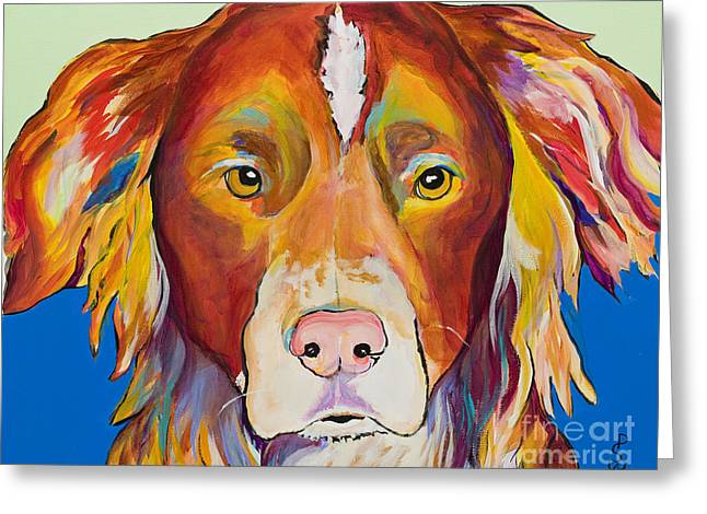 Collie Greeting Cards - Keef Greeting Card by Pat Saunders-White