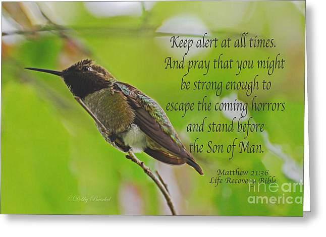 Testament Greeting Cards - Keep Alert At All Times Greeting Card by Debby Pueschel
