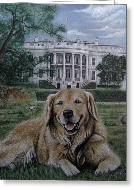 House Pet Greeting Cards - Kelli on the White House Lawn Greeting Card by Jonathan Anderson