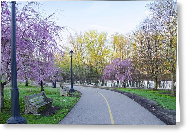 Kelly Drive Digital Greeting Cards - Kelly Drive Bike Trail in Spring Greeting Card by Bill Cannon