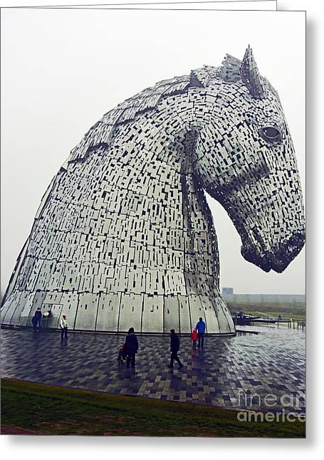 Kelpie Photographs Greeting Cards - Kelpie. Greeting Card by Stan Pritchard