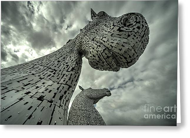 Stainless Steel Greeting Cards - Kelpies  Greeting Card by Rob Hawkins
