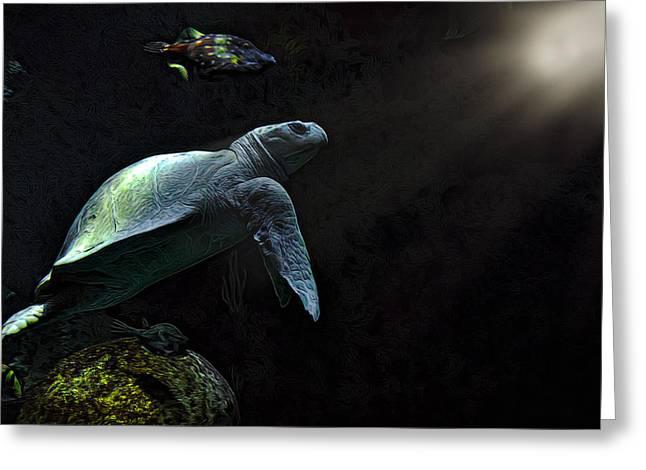 Aquarium Fish Greeting Cards - Kemps Sea Turtle 2 Greeting Card by Janet Fikar