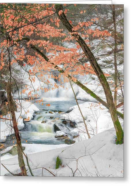 New England Greeting Cards - Kent CT Winter Woodland Stream Greeting Card by Bill Wakeley