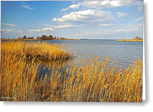 Best Sellers -  - Prospects Greeting Cards - Kent Island Greeting Card by Brian Wallace