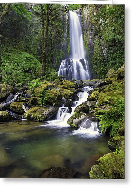 Waterfall Greeting Cards - Kentucky Falls Greeting Card by Robert Bynum