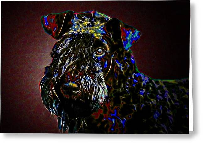 Pop Mixed Media Greeting Cards - Kerry Blue Terrier Greeting Card by Alexey Bazhan