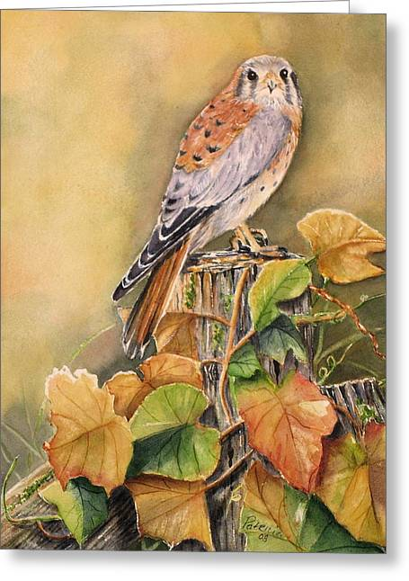 Wood Post Greeting Cards - Kestrel in Fall Greeting Card by Patricia Pushaw