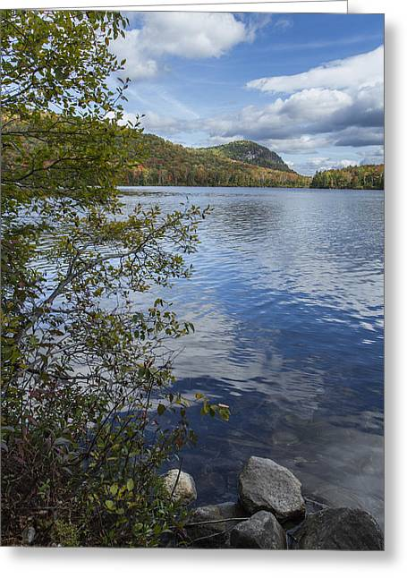 Rocks Greeting Cards - Kettle Pond Vermont Shoreline Autumn  Greeting Card by Andy Gimino