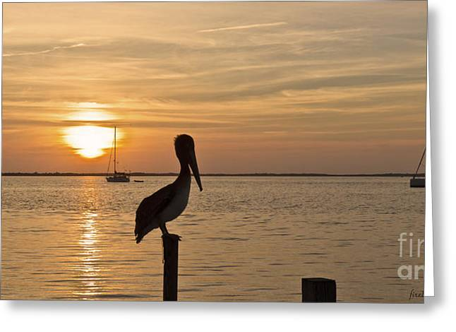 Firebird Reflections Greeting Cards - Key Largo Sunset Greeting Card by Diane Zumbach