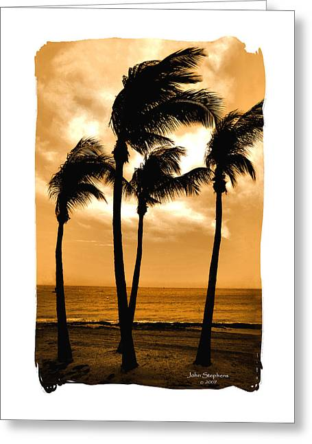 Dancing In Paradise Greeting Card by John Stephens