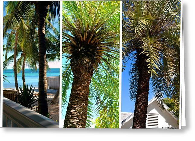 Florida House Greeting Cards - Key West Palm Triplets Greeting Card by Susanne Van Hulst
