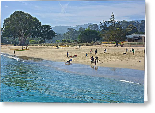 On The Beach Greeting Cards - Kids Playing on the Beach by Monterey Bay-California      Greeting Card by Ruth Hager