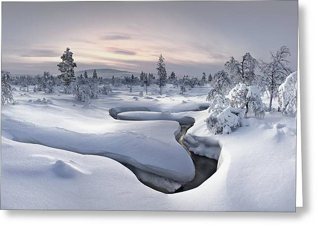 Winter Landscapes Photographs Greeting Cards - Kiilopaa - Lapland Greeting Card by Christian Schweiger