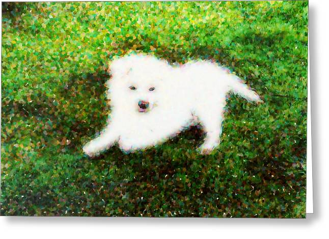 Puppy Digital Art Greeting Cards - Kimi Greeting Card by Ivan Gomez