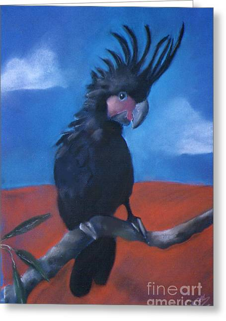 Bird On Tree Pastels Greeting Cards - King of Cockatoos Greeting Card by Caroline Peacock