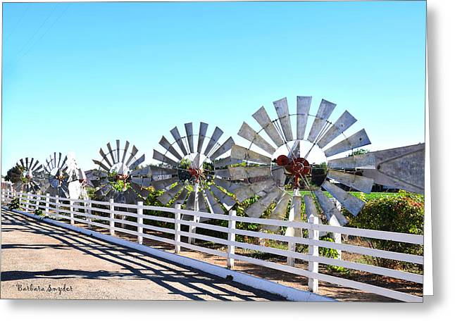 King Of The Windmills Greeting Card by Barbara Snyder