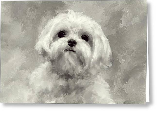 Maltese Dogs Greeting Cards - King Of The World Greeting Card by Lois Bryan