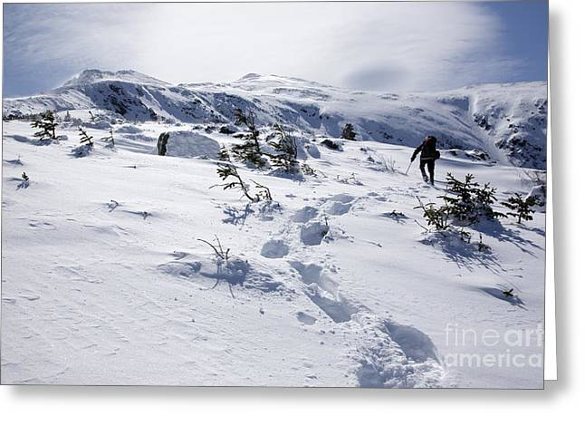 Blowing Snow Greeting Cards - King Ravine - White Mountains New Hampshire USA Greeting Card by Erin Paul Donovan